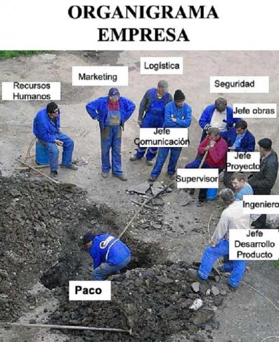 Organigrama estándar de empresa en España